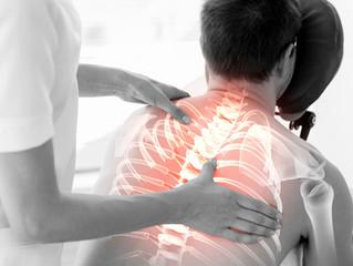 Principes de l'Ostéopathie