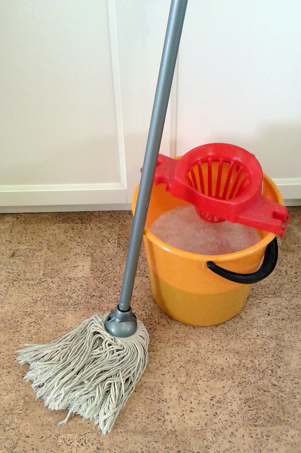 Mop_and_bucket