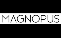 Magnopus - Los Angeles
