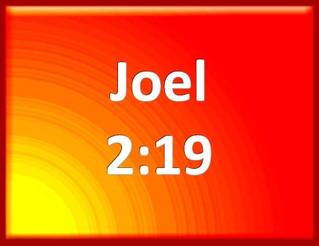 2019 - A Joel 2:19 Year