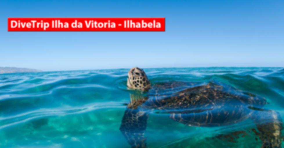 DiveTrip-Ilha-Vitoria.png