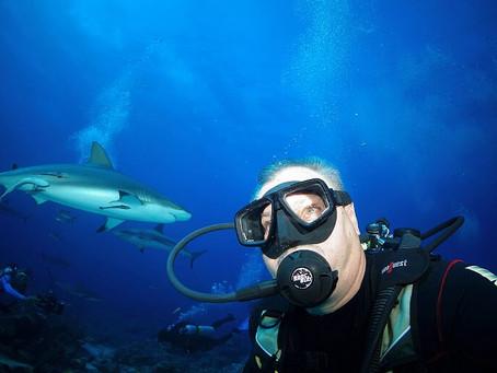 Roatan: o melhor do mergulho para quem quer se aventurar no caribe