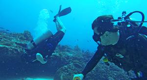 Consciência de Mergulho: Uma Habilidade