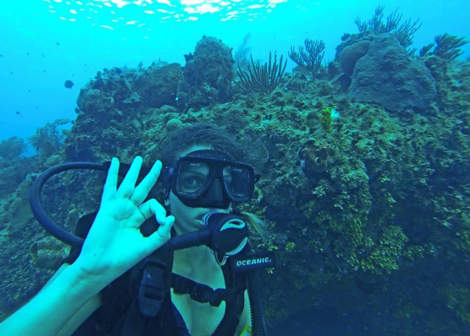 Aprenda a mergulhar, e a se comportar como mergulhador