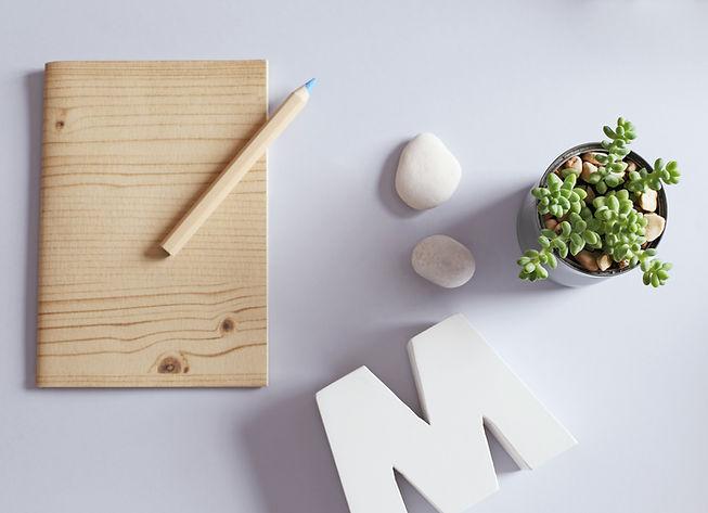 Sketchbook de madeira com vasinho de suculentas