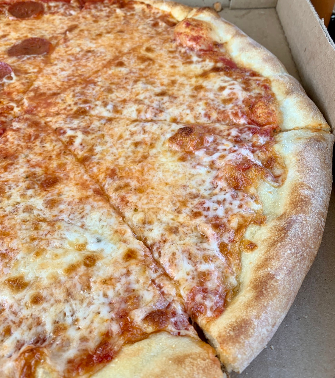 photo of new york style pizza crust