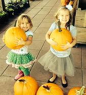 Beans & Greens Farm - farmstand pumpkins