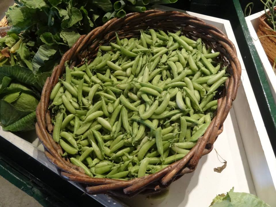 Beans & Greens Farm - farmstand peas