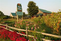 Beans & Greens Farm - sign view