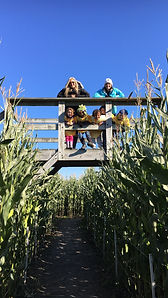 Beans & Greens Farm - Cornmaze Happy Bri