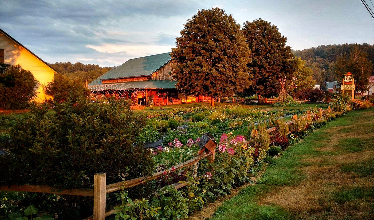 Beans & Greens Farm - Farmstand at Sunse