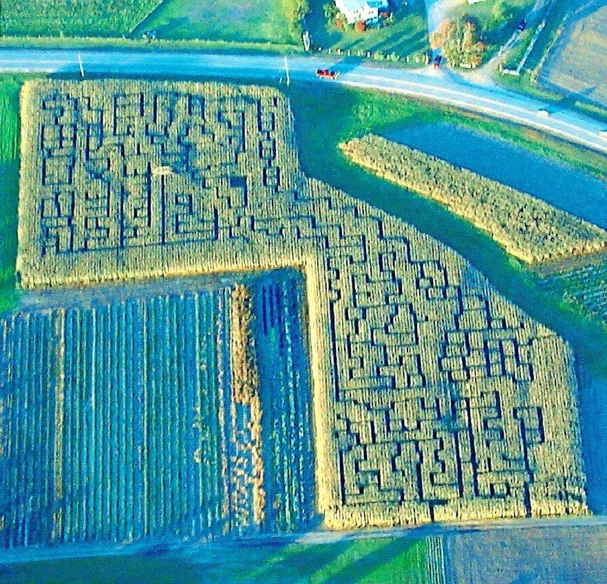 Beans & Greens Farm - Cornmaze 2003
