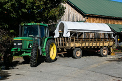 Beans & Greens Farm - Anne Skidmore - tractor covered wagon
