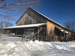 Beans & Greens Farm - Farmstand Winter C