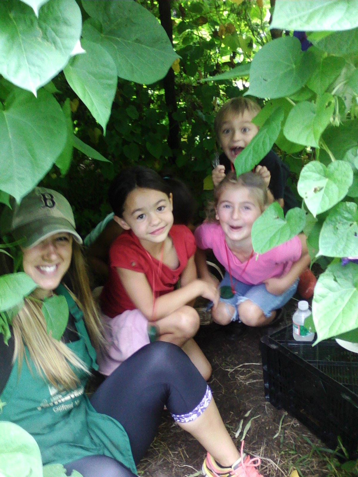 Beans & Greens Farm - Teepee Happy Kids