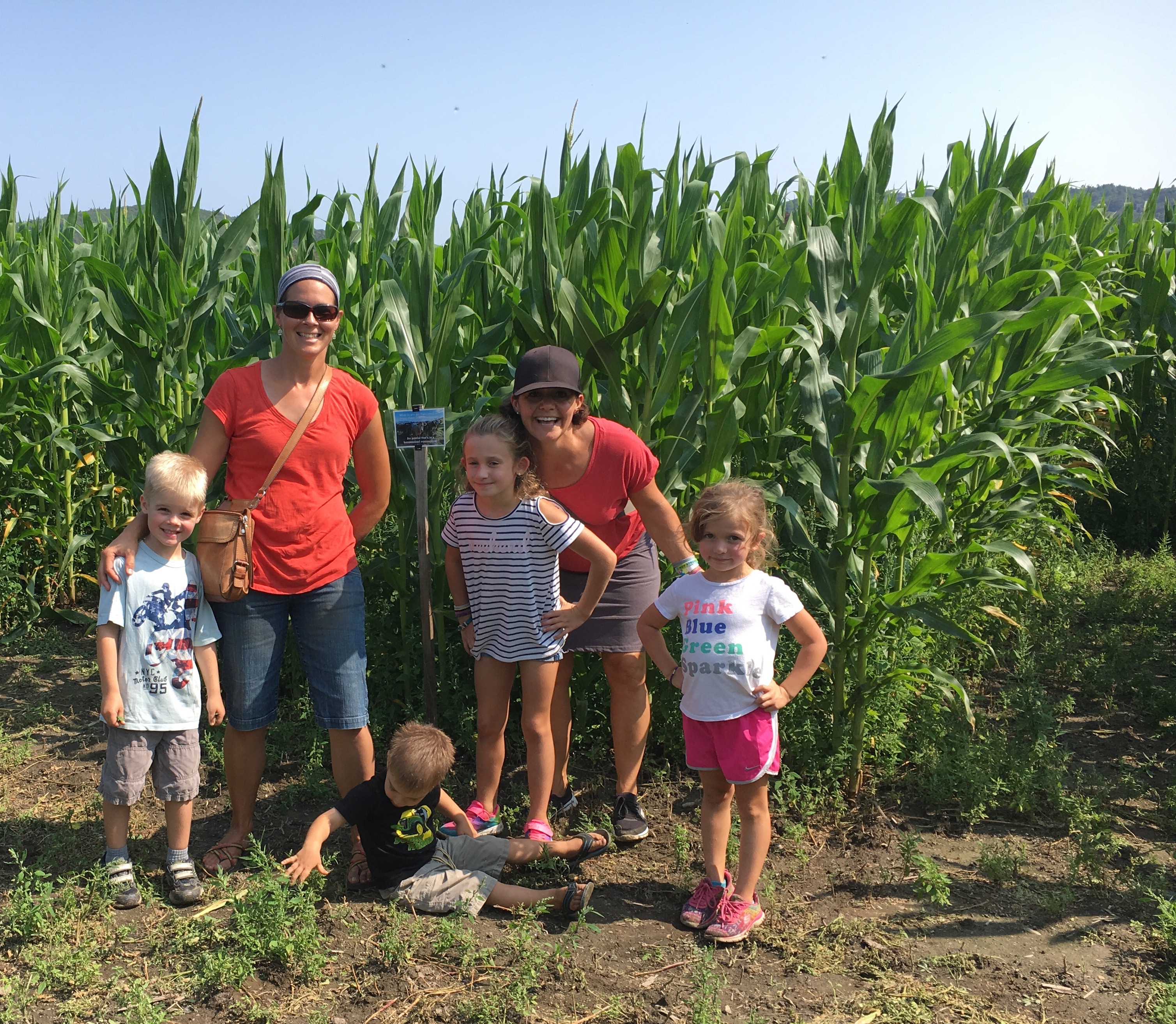 Beans & Greens Farm - cornmaze happy family