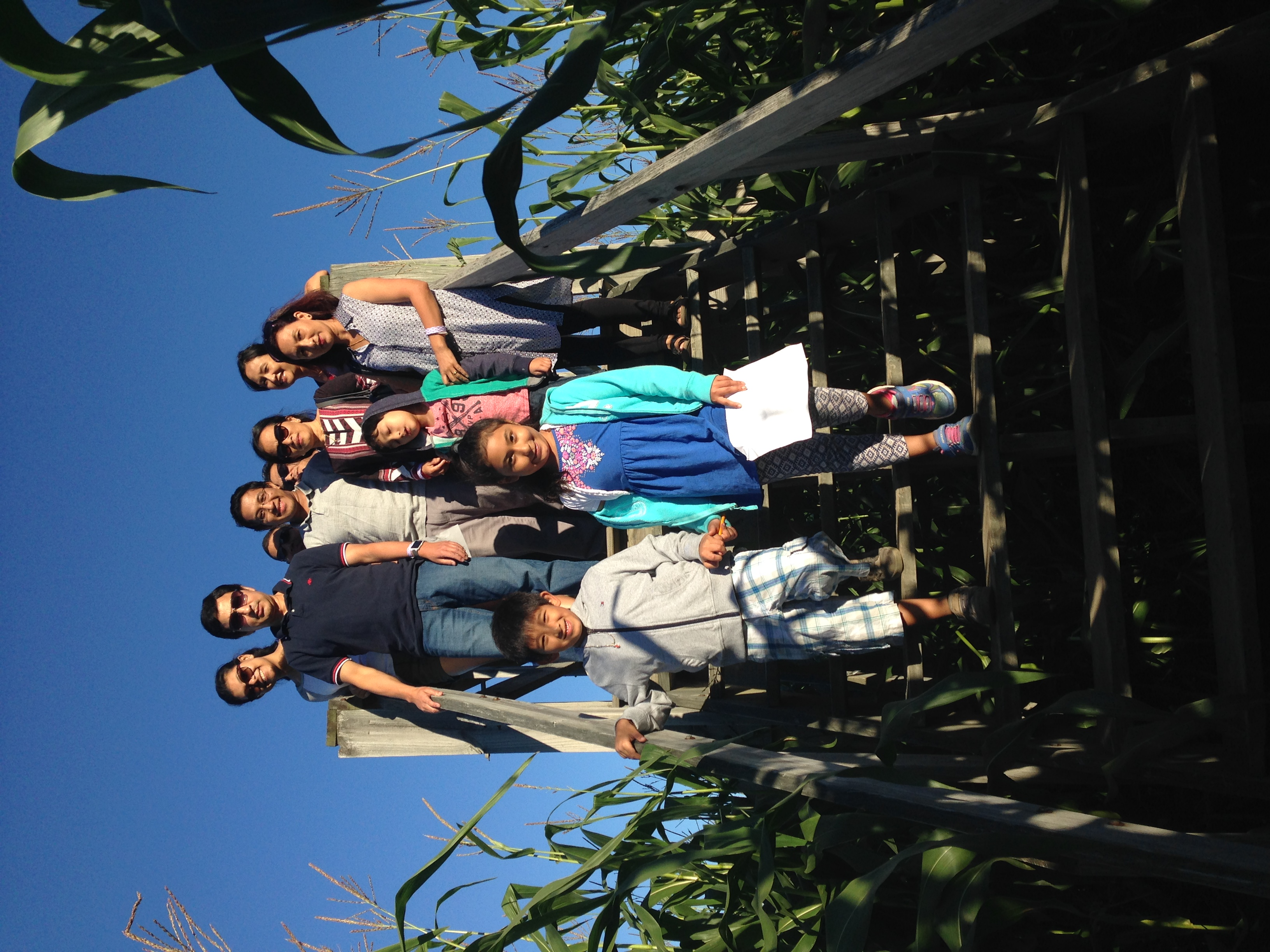 Beans & Greens Farm - cornmaze family bridge