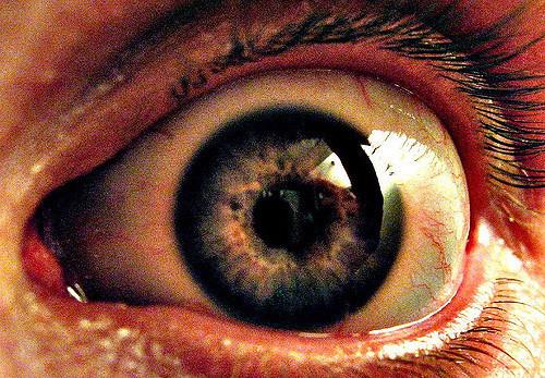 dead eye 2