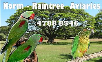 Raintree Aviaries.JPG