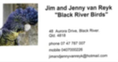 Black River Birds003 (2).jpg