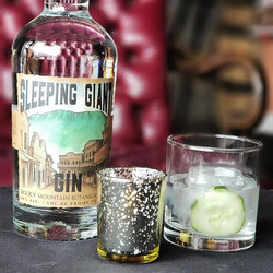 It's Sleeping Giant Gin's first winter,