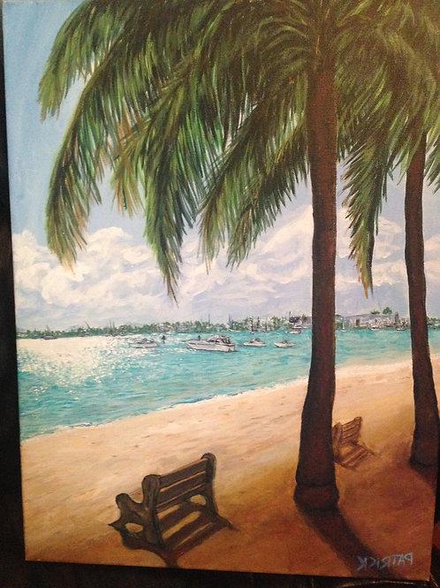 Palm Beach Day