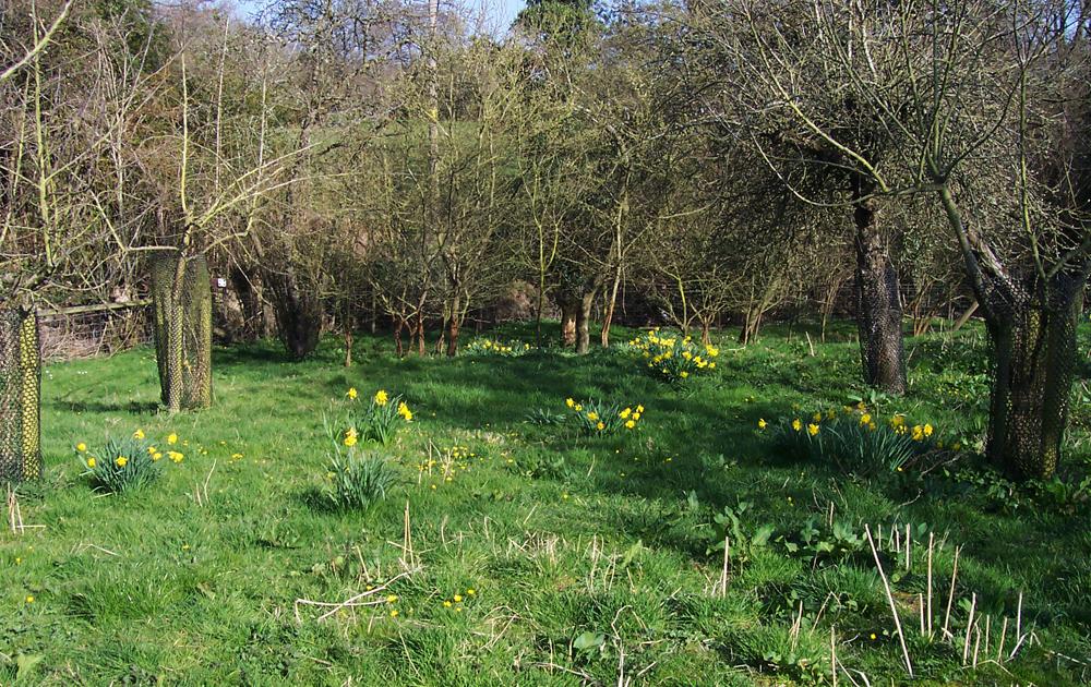 shropshire-hills-aonb