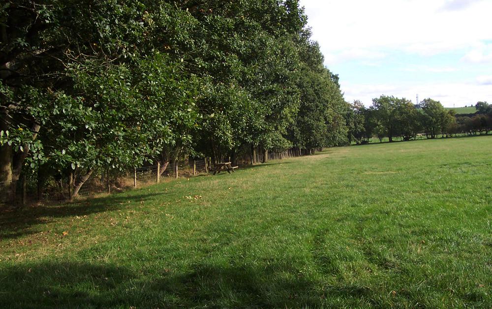 shropshire-camp-site