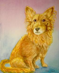 Mandie's Dog