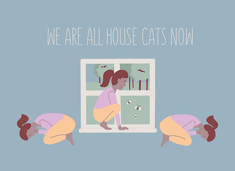 2020_4_17_House Cats.jpg