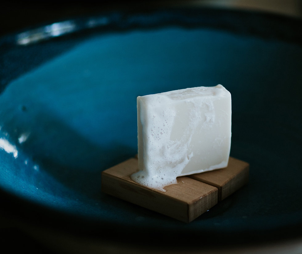 soap in bowl sink.jpg