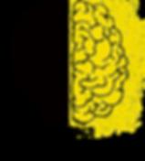 brain-2062053_1920_modificato.png
