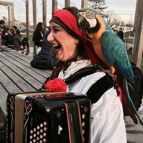 Chanson pirate et perroquet