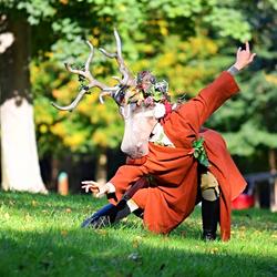 Le Cerf de la forêt (contorsion)