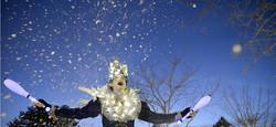 Les Lucioles échassiers lumineux
