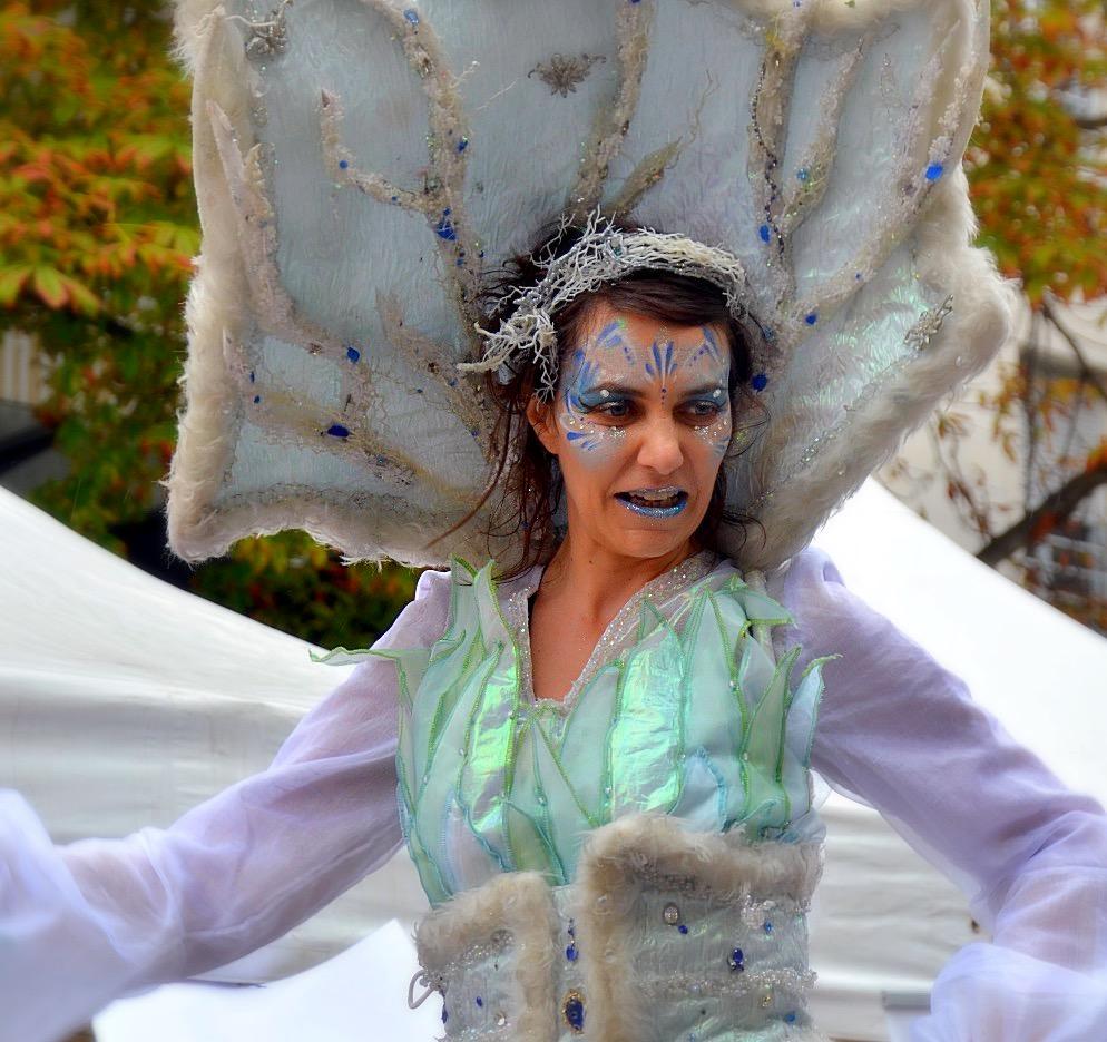 la reine de l'hiver échassière
