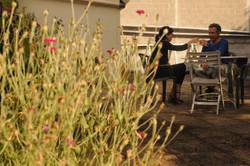 réunion apéro en terrasse
