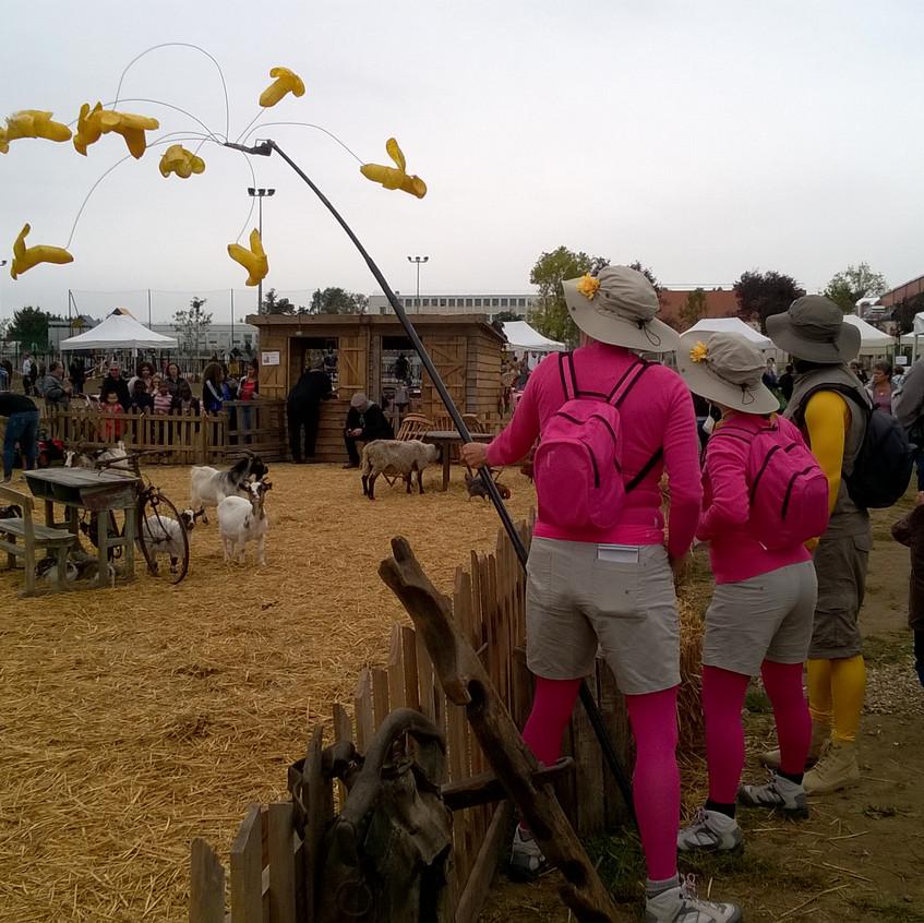 Safari en déambulation