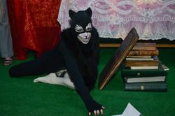 Le chat contorsionniste