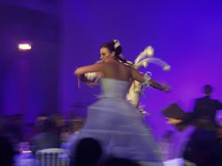 white night danse des échassières