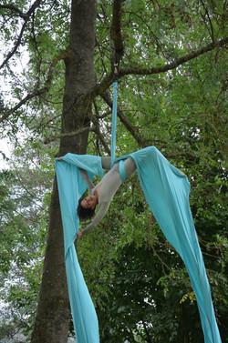 tissu aérien dans les arbres