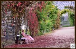 « Surprises au jardin »