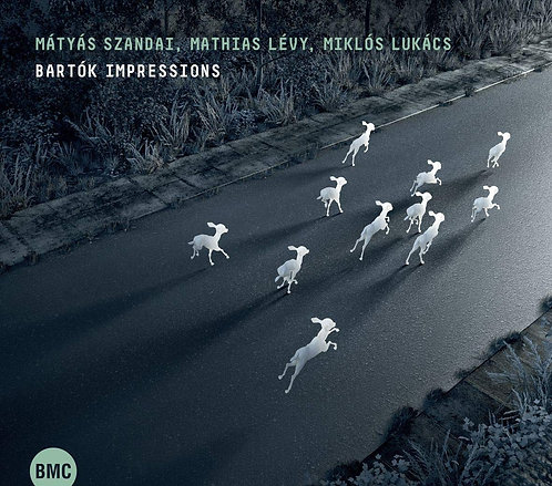 Bartok Impressions Matyas Szandai Mathias Levy Miklos Lukacs