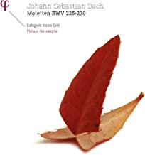 Bach Motets Herreweghe - vinyle