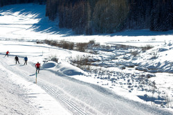 Langlauf mit Gianluca Cologna