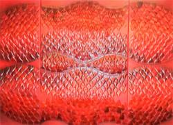 Triptyque_Flots_rouges,_120_X_65_cm,_chambres_à_air_sur_toile,_peinture_acrylique