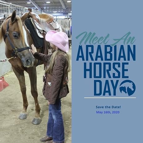 ahaec arabian horse day.png