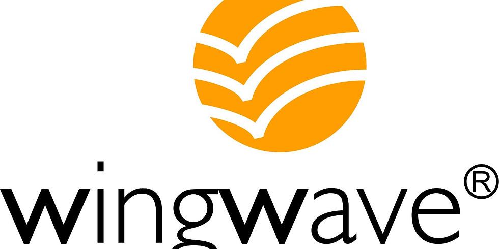 wingwave - Stress ade