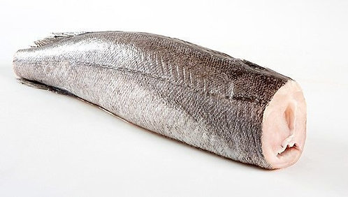 Hake Fish (Headless)