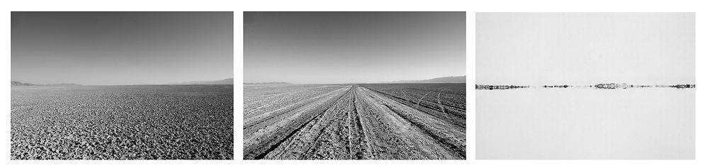 paisaje_camino.jpg